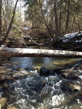 Mill Creek 5