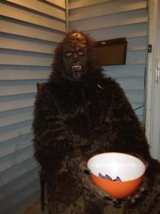 My Neighbor is Chewbacca