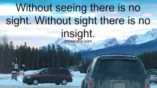 without-seeing-there-is-no-insight_poster